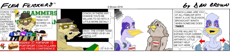 chronological strip 13